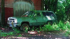 A FADED RUSTY 1980 DODGE RAMCHARGER IN JUNE 2015 (richie 59) Tags: trees summer usa ny newyork overgrown barn rural america truck outside us weeds rust 4x4 weekend country sunday rusty dirty faded rusted dodge newyorkstate suv oldtruck nys 4wheeldrive wornout nystate fourwheeldrive hudsonvalley 2door 2015 dodgetruck fadedpaint ulstercounty greentruck twodoor americantruck midhudsonvalley olddodge ramcharger midhudson ulstercountyny woodenbarn oldsuv dodgeramcharger ustruck rustydodge 2010s dodgesuv americansuv greensuv richie59 1980struck june2015 1980dodge townofnewpaltzny townofnewpaltz ussuv 1980ssuv rustysuv june212015 1980dodgeramcharger 1980ramcharger