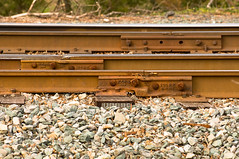 12-1271 (George Hamlin) Tags: railroad photography virginia photo george rust bars branch different tracks rail siding buckingham decor joint weights compromise hamlin bbrr gordonsville