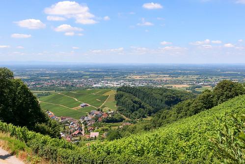 Vue sur Bühl depuis l'enceinte du château Alt-Windeck