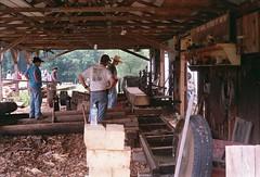 watching sawmill (rentavet) Tags: nikkormatft2 fuji200asa nikkor50mm saegertownpa