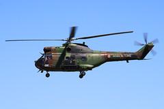 Aropspatiale SA-330B Puma Arme de Terre F-MDDC (herpeux_nicolas) Tags: military puma militaire rotor armedeterre sa330bpuma sa330b aropspatiale fmddc