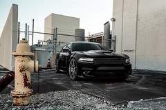 Dodge Charger R/T Scat Pack on Velgen Wheels VMB9 Matte Gunmetal 22x9 & 22x10.5 (VelgenWheels) Tags: srt8 america americanmuscle usdm usa us wheels wheel whips dopewhips dopewhip whip exhaust rim rims tyres tyre tires tire yahoo youtube oem products photos photo pictures picture pics pic automobile automobiles auto autos alloy alloywheels sport deep deepconcave daily driven dual dualconcave fitment wheelfitment wheelporn google germany france florida japan uk australia lowered low lowering rez res cars car custom customcars velgen velgenwheels velgensociety vmb5 bing ask askcom new mods rt dodge charger scatpack