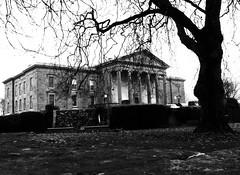 Ennis Courthouse (frankhimself) Tags: noiretblanc garden blackandwhite bw scenery tree law court courthouse ireland coclare ennis