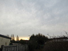 Thursday, 8th, Milder than of late IMG_0722 (tomylees) Tags: essex morning winter december 2016 8th thursday weather