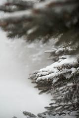 sunday-3091 (FarFlungTravels) Tags: winter ski skiing laurelhighlands pennsylvania reservoir morning sunrise foggy snow squall