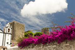 Óbidos IV (Cataphract) Tags: castleofóbidos church flowers igrejadesantiago obidos portugal óbidos leiria