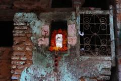 Wall and shrine, Old Delhi (NovemberAlex) Tags: colour india delhi texture urban