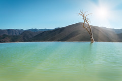 The lonely tree - Hierve el Agua, Oaxaca state, Mexico (Maria_Globetrotter) Tags: landscape mexico mexiko sun sunshine water lonely tree ripples