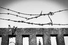 barbed wire sky (DrFirestone) Tags: blackandwhite blackwhite bw monochrome surreal minimalistic minimalist