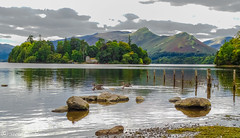 Derwent Water, looking across to the island and Catbells. (steve.gombocz) Tags: sceneryshooting simplylandscapes westcumbria cumbria colour colours color colourmania natureisbeautiful lakedistrictuk lakedistrict out outandabout olympusamateurs landscapes landscapephotos landscapephotography landscapephotographs water lakes reflections reservoirs scenery landscapescenes hills fells trees islands derwentwater walking photographs photography catbells panaramas naturesviews lakescenes landscapepictures nicepictures nicephotos nicelandscapes flickrlandscapes flickrscenery explorelandscapes explorescenery explorelakes olympus olympususers olympuscamerausers olympuseurope olympusmzuiko25mmf18lens olympusdigitalcamerausers micro43rdsuk olympuszuikodigitalclub greylaggeese geese birds calm clouds fence olympusem5mark2 olympusm25mmf18