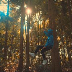 「ドリームスケープ」 (tommy conlin) Tags: sonya7s dreamscape leviathan forest sony a7s