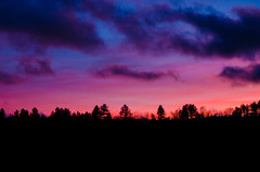 Pink Sunset (Antoine Camilli) Tags: antoine camilli nikon d7000 sun sunset tree light france lozere ispagnac black pink blue gradian nature landscape