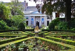 A Dutch garden (angelsgermain) Tags: house garden flowerbeds façade columns pediment sculptures plants trees flowers symmetry museum museumvanloon keizergracht amsterdam northholland netherlands