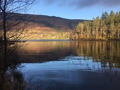 Loch Ard (troutcolor) Tags: lochard walk