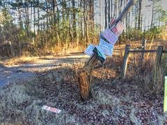 Power Pole Impact Triggers One Car Rollover (cullmantoday) Tags: power pole impact triggers one car rollover cullman county good hope cross creek golf alabama