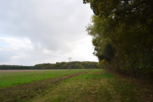 Footpath to Parkers Grove