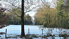 Prattenburg in de winter - HFF (Cajaflez) Tags: hff prattenburg rhenen winter snow sneeuw hek fence