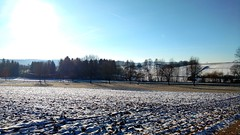 Snow melts slowly (r0rsch8ch) Tags: snow winter trees field wood street hilly cold sun