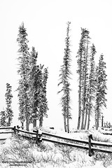 (Ryan C. McGinley) Tags: snow utah nationalpark sandstone iron erosion limestone amphitheater nationalmonument shale manganese cedarcity dixienationalforest cedarbreaksnationalmonument