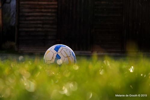 Early Morning Football