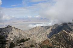 Desde la Sierra de San Pedro Martir (pinebones) Tags: california san sierra pedro baja martir