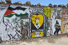 MAMA PALESTINE, TUBAS, PALESTINE, 2015 (MATLAKAS) Tags: matlakas zolani palestine israel jerusalem tibas photographypalestine war gaza apartheid westbank graffiti