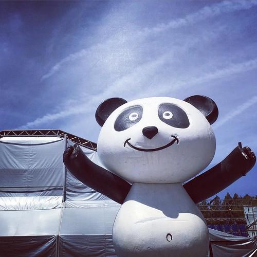 #panda #killingthefuckingpanda