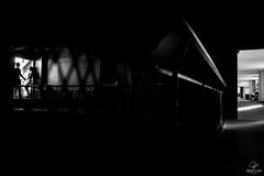 OF-precasamento-RaqueleChristiano-290 (Objetivo Fotografia) Tags: bar ensaio amor carinho raquel fotos cerveja casal poa esporte corrida namorados sombras ceva noiva bebida copos detalhes tnis gasmetro dois fotografias ensaiofotogrfico unio luminrias sentimento noivo noivos christiano usinadogasmetro tocadacoruja orladoguaba ensaioprcasamento