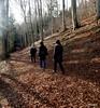 DSCN0860 (derudo) Tags: südschwarzwald stohren münstertal vogesenblick blickindierheinebene