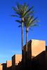 Ocre, verde, azul (Herminio.) Tags: ocre verde azul muralla cielo palmera palacio marruecos marrakehc ocher green blue wall sky palmtree palace morocco marrakech verd blau cel palau elmarroc marràqueix badi badii