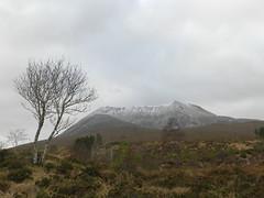 Beinn  Eighe(3,310ft), near Kinlochewe, Highlands of Scotland, Jan 2017 (allanmaciver) Tags: beinn eighe torridon mountains kinlochewe highlands munro lone tree snow clouds swirl weather mist rain bleak moor scotland january bare allanmaciver