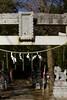 One scene in Konda Hachiman Shinto shrine 2017/01No.3. (HIDE@Verdad) Tags: pentaxistds autorikenon55mmf14 m42 pentax istds
