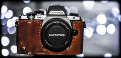 OLYMPUS E-M10. (CWhatPhotos) Tags: cwhatphotos omd em10 17mm prime lens picture pictures photo photos image images foto fotos that have which contain digital camera olympus esystem cameras equipment own four thirds 43 system depth field fine dof christmas xmas light lights shadows shadow dark flickr