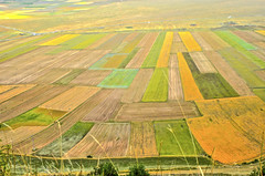 Castelluccio : View of Piano Grande in August ! Its beautiful colors (sandromars) Tags: italia umbria perugia castelluccio pianogrande colori
