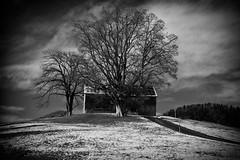Trees and old house (Nat.Images .) Tags: tree longexposure nd110 monochrome neutral density blackwhite bianco e nero fineart art
