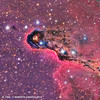 IC 1396 - Elephant Trunk Nebula (Roberto Capacci) Tags: ic1396 moravian lrgb nebula elephant trunk c11 ccd