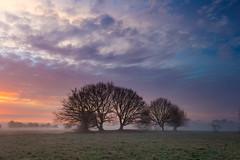 sunrise (Dave Watts Photography) Tags: suffolk davewatts wwwdavewattsphotographycom orange blue sky sunrise winter frost cloud fisrtlight canon dawn