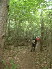 Nigel Dyson-Hudson (North Country Trail) Tags: hike100nct getoutside northcountrytrail hiking findyourpark greatnorthcollective nps100 exploremore adventure payitforward maintain volunteer trail flt