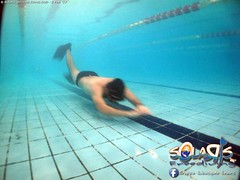 """02 febbraio 2017 - Prove sub & Freediving... • <a style=""""font-size:0.8em;"""" href=""""http://www.flickr.com/photos/138167729@N03/32782888955/"""" target=""""_blank"""">View on Flickr</a>"""