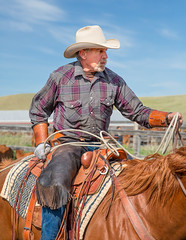 Experienced Cowboy (www.toddklassy.com) Tags: ranch wild portrait horse usa brown west male leather animal vertical rural work person countryside daylight holding cowboy montana day mt cattle serious beef working documentary handsome wranglers bluesky icon rope retro jeans riding american ag western older rodeo americana denim copyspace agriculture capture chinook rancher sideview cowboyhat job pulling chaps bearded horseback masculinity saddle agricultural throwback tack oldfashioned lookingaway ranching quarterhorse roper caucasian roping lasso sorrel experienced reins montanan colorimage chinks environmentalportraiture blainecounty