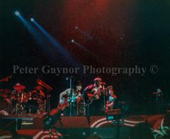 img137.jpg (Peter Gaynor (u2slane)) Tags: 1989 concerts december gigs pointdepot scannedconcerts u2 scannedgigs
