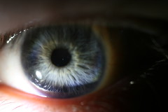 My Iris (FilmandFocusPhoto) Tags: blue summer black macro reflection eye nature animal canon 50mm natural skin gray sigma organ eyelash untouched macrophotography noprocessing photoshopfree macrophotographer macrophotographers macrounlimited macrodreams