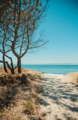 Le Petit Nice (Cyrielle Beaubois) Tags: ocean blue sea summer sky france beach water sand shadows turquoise south atlantic pines plage 2015 gironde latestedebuch lepetitnice canoneos5dmarkii cyriellebeaubois