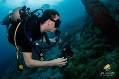 slu_bradh_V55A6188594 (kaufmankronicle) Tags: 2016 diving kidsseacamp stlucia