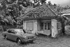Tempo Doeloe Dibayang-Bayang Ketidakpedulian (Ya, saya inBaliTimur (leaving)) Tags: bali building gedung houses rumah bedugul blackwhite hitamputih blackandwhite