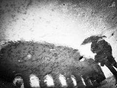 Think different (ila.bona) Tags: ombrello ilabona colosseo roma drop gocce ila architettura monocromo man alone italy biancoenero bn anfiteatro rain bw street riflesso reflection