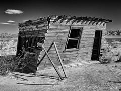 Leaning Over (claudiov958) Tags: abandoned abandonedbuilding biancoenero blackwhite blancoynegro building california černýabílý claudiovaldés coloradodesert czarnyibiały mediumformat ngc noiretblanc pretoebranco schwarzundweiss черноеибелое pentaxart cabin smcpentaxfa6453355mmf45al