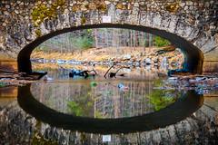 Two of a Kind (Thomas Hawk) Tags: ahwahneebridge america california gyosemite2011 gyosemite2012 mercedriver usa unitedstates unitedstatesofamerica yosemite yosemitenationalpark yosemitevalley bridge reflection stonebridge fav10 fav25 fav50 fav100