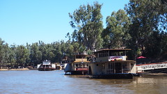On the Murray River at Echuca (dok1969) Tags: echuca victoria murrayriver australia summer boats trees
