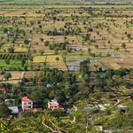 Reisfelder thumbnail